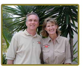 Termite and pest control services in Valrico and Lithia